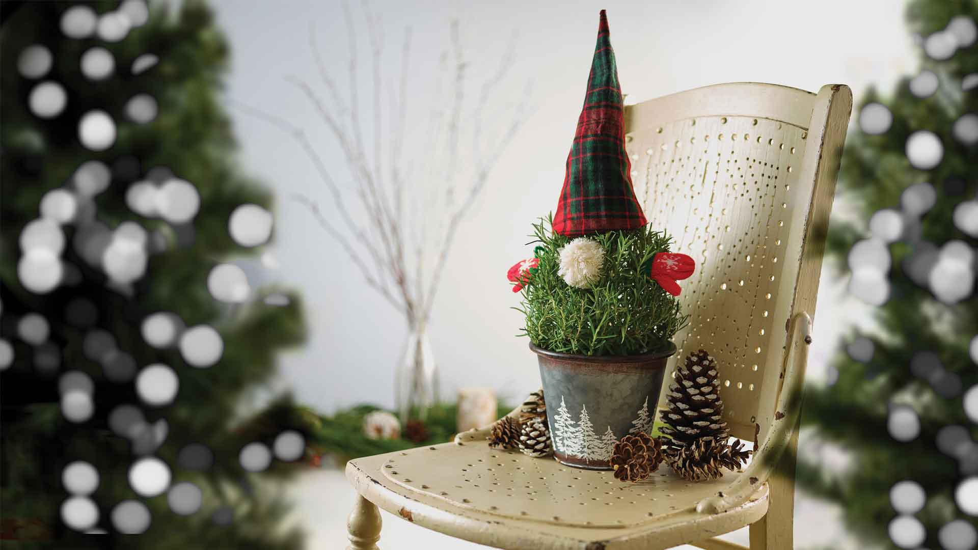 A gnome made of a rosemary tree with a hat and mittens. The tree is planted in a metal pot with white trees on it and is sitting on a metal chair.